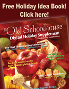 2009 Holiday Digital Supplement/Idea Book