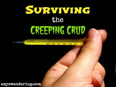 surviving-the-creeping-crud.jpg