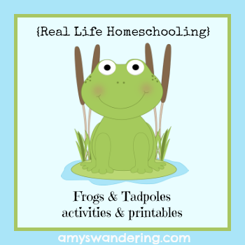 frogs tadpoles activities and printables