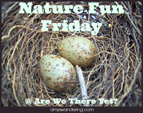 nature fun friday