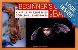 stoke's beginner's guide to bats