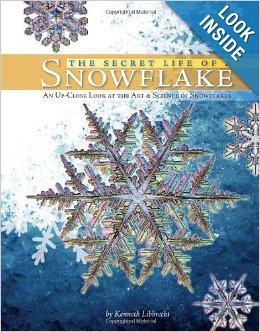 secret life of a snowflake