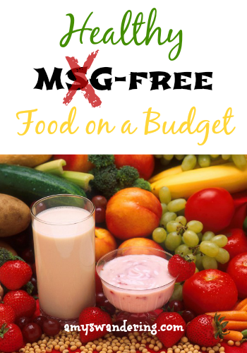healthy msg free food on a budget