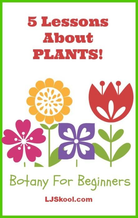 Botany-for-beginners