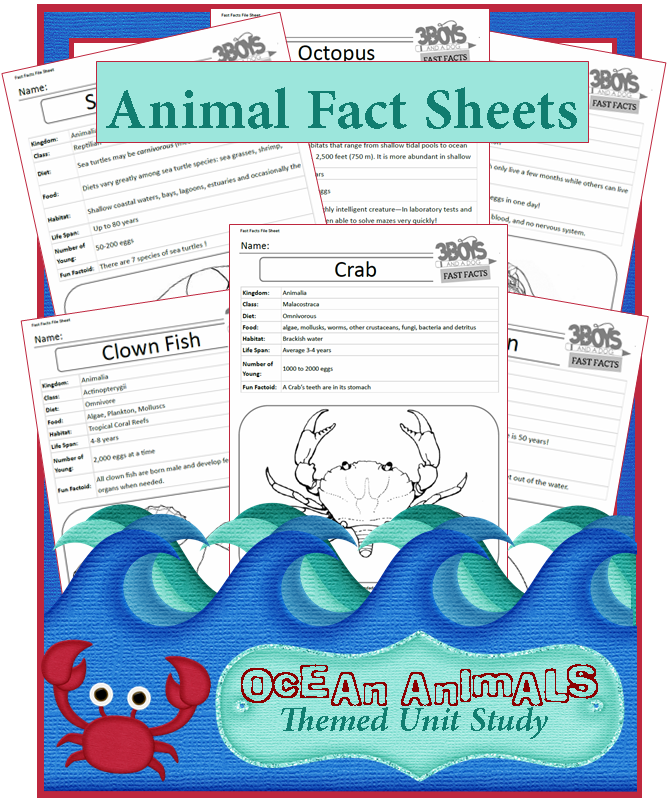 ocean animals fact sheets