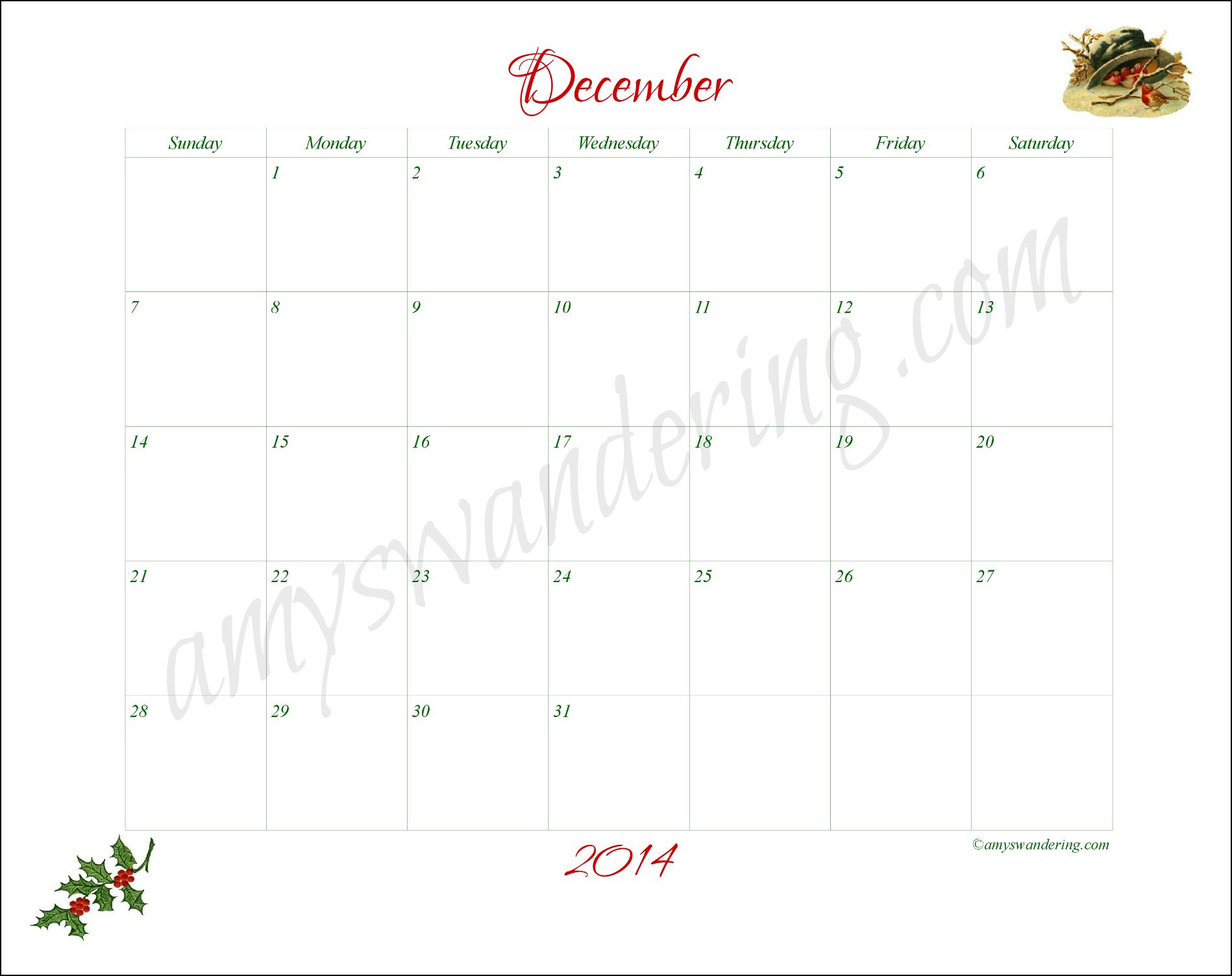 December Nature Observation Calendar
