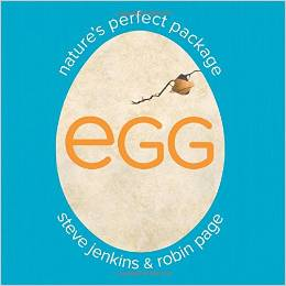 Egg Natures Perfect Package