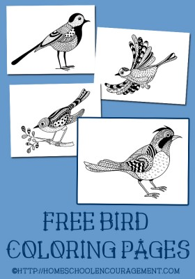 BIrd-Coloring-Pages-PIN