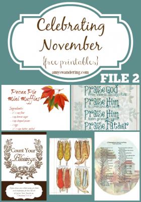 Celebrating November File 2