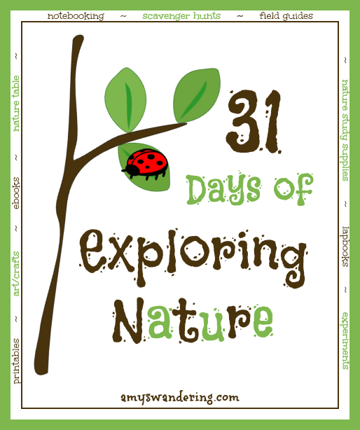 31 Days of Exploring Nature - your comprehensive guide to studying nature