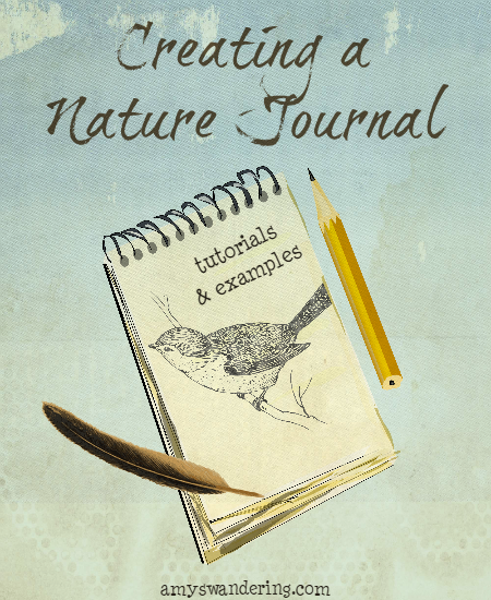 Creating a Nature Journal - book suggestions, sketching & watercolor lessons, and journal inspiration