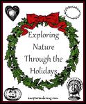 Exploring Nature Through the Holidays