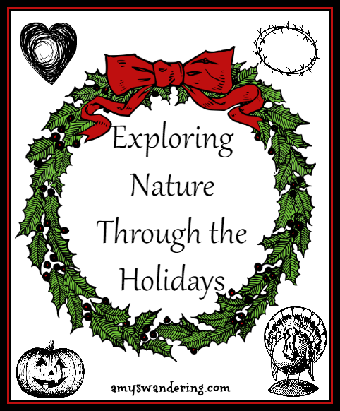 Exploring Nature Through the Holidays - scavenger hunts, unit studies, and printables for nature study during the holidays