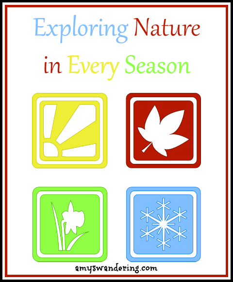Exploring Nature in Every Season - nature walk printables, notebooking pages, lapbooks, ebooks, and unit studies