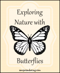 Exploring Nature with Butterflies