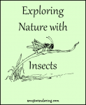 Exploring Nature with Insects