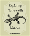 Exploring Nature with Lizards