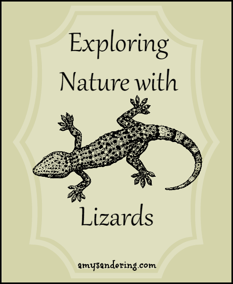 Exploring Nature with Lizards - printables, unit studies, & eBooks