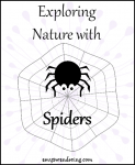 Exploring Nature with Spiders