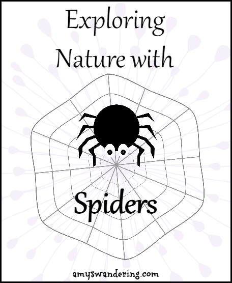Exploring Nature with Spiders - printables, unit studies, & eBooks