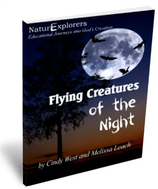 Flying-Creatures-of-the-Night-3D-Cover