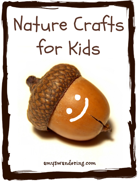Nature Crafts for Kids using rocks, sticks, acorns, pinecones, and flowers