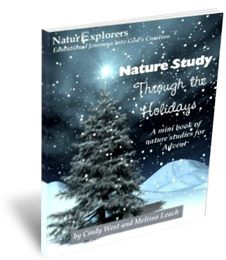 Nature-Study-Through-Holidays-Advent
