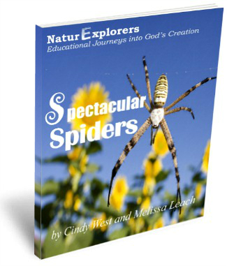 Spectacular-Spiders-3D-Cover