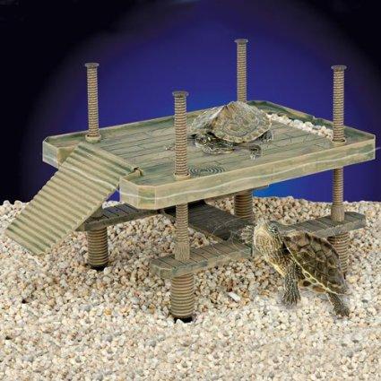 turtle pier
