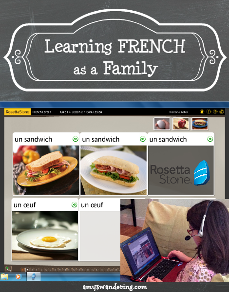Learning French as a Family With Rosetta Stone