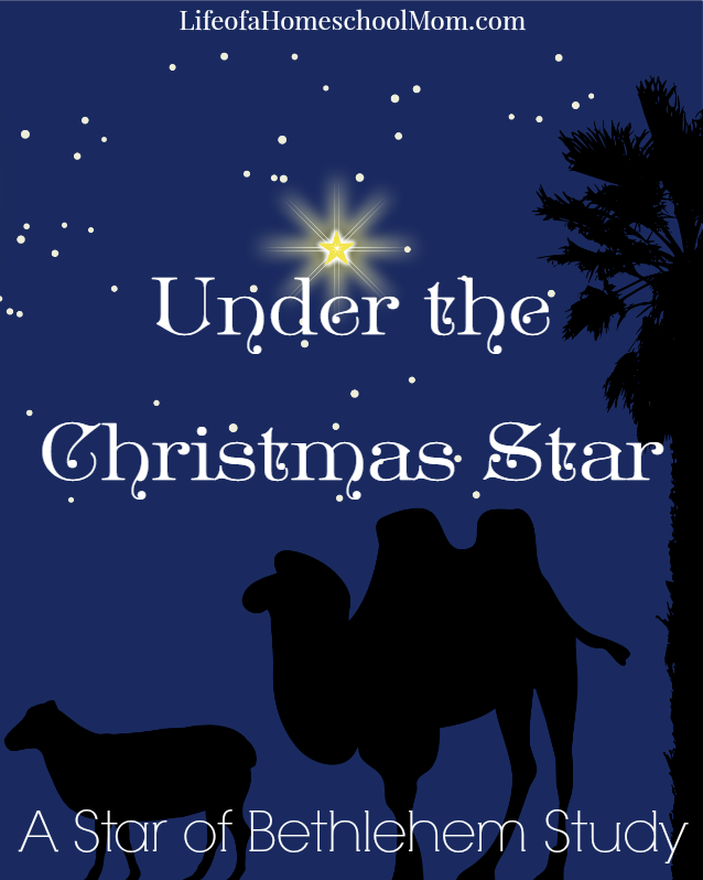 Under the Christmas Star