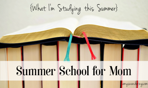 Summer School for Mom