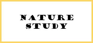 bts nature study
