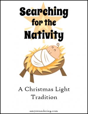 Searching for the Nativity