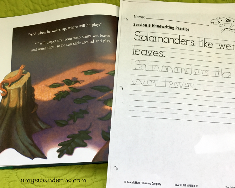 Salamander Room Worksheet