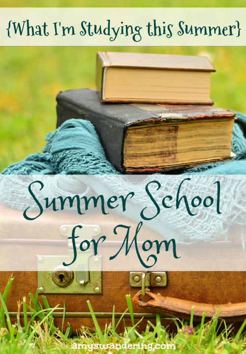 Summer School for Mom 2017