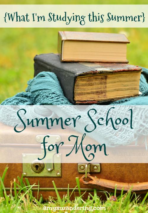 Summer School for Mom 2017