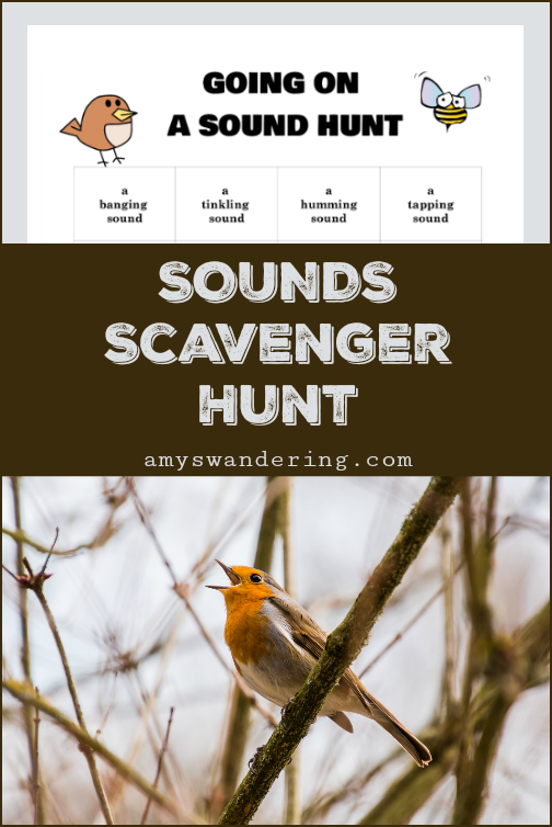 Going On A Sound Hunt