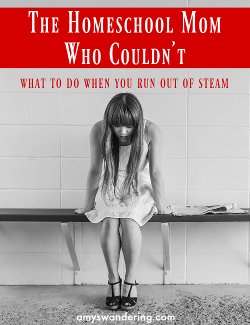 The Homeschool Mom Who Couldn't - What to do when you run out of steam