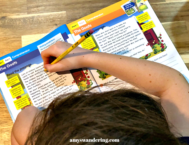 Reading Eggs Workbook Kid